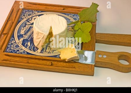 Camembert - Stock Photo