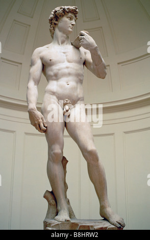 Florence Italy David by Michelangelo in Galleria dell Accademia - Stock Photo
