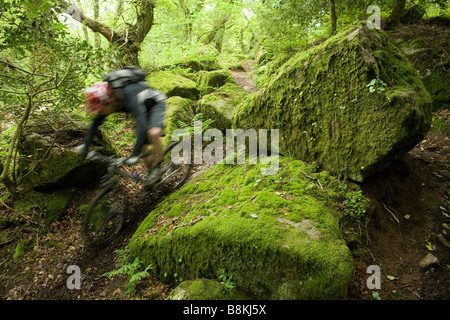 Mountain Biker Rides Past Moss-covered Rocks in the Dartmoor National Park - Stock Photo
