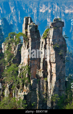 Asia, China, Hunnan Province, Zhangjiajie National Forest Park. Sandstone pinnacles of Western Sea at Emperor Mt. - Stock Photo