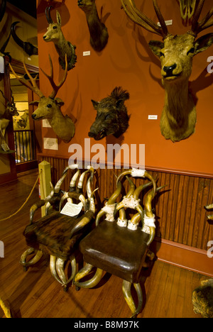 ... Buckhorn Saloon And Museum San Antonio Texas Tx Landmark Above Over Chairs  Handmade From Animal Horns