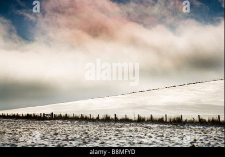A minimalist snowy winter landscape on the Wiltshire Downs England UK - Stock Photo