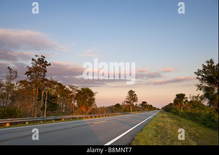 The Tamiami Trail (US 41) at sunset in the Big Cypress National Preserve, Florida Everglades, Florida, USA - Stock Photo