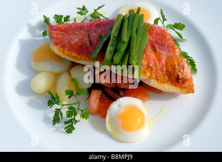 Red snapper with quails egg - Stock Photo