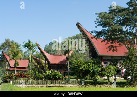 Newly built Torajan houses, in Tombang (Sulawesi - Indonesia). Maisons Toraja nouvellement construites, à Tombang - Stock Photo