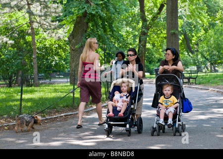 Two women pushing toddlers in strollers and a woman walking a small dog in Central park - Stock Photo