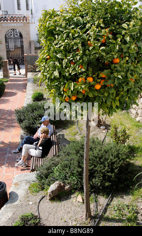 Couple sitting under an Orange tree in the white town of Frigiliana Andalucia southern Spain - Stock Photo