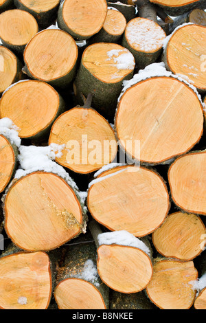 Pile of big tree logs saw cut pattern in winter partly covered with snow. - Stock Photo