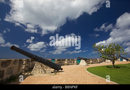 English iron cannons from 17th century at Needham's Point, Barbados, 'St. Michael' - Stock Photo
