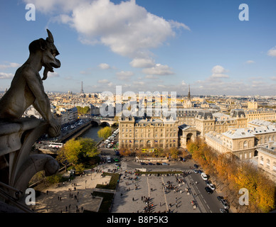 Eiffel Tower viewed from the top of the Notre Dame Paris France - Stock Photo