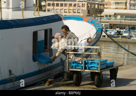 commercial Fishermen Unloading Their Catch From a Fishing Trawler Santa Pola Spain - Stock Photo