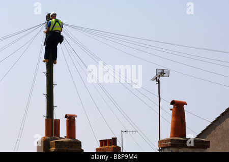 "'Telephone Engineer' at work on a ""telegraph pole"", Britain, UK - Stock Photo"