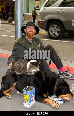 Homeless man with dog, cat and mouse and tin can sitting on street in San Francisco California asking for money - Stock Photo