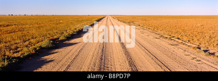 outback road, Queensland Australia - Stock Photo