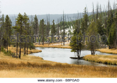 Firehole River, Yellowstone National Park, Wyoming, USA. - Stock Photo