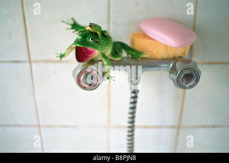 Plastic toy frog, sponge, pink bar of soap set on shower faucet - Stock Photo