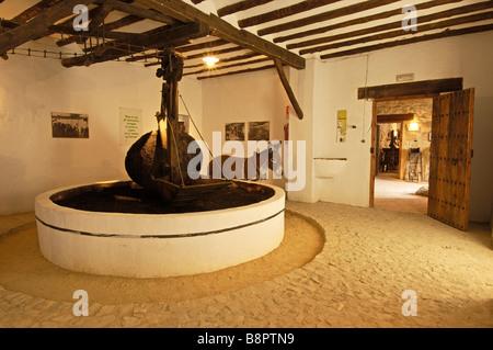 Olive oil museum Hacienda La Laguna Museo de la Cultura del Olivo near Baeza Jaen Andalusia Spain - Stock Photo