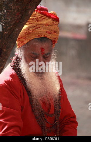 Nepal Kathmandu Valley Dashinkali shrine sadhu holy man - Stock Photo