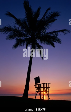 Deck chair under coconut palm at sunset - Stock Photo