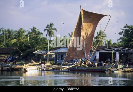 old oruvas boat in the harbor of Negombo, Sri Lanka - Stock Photo