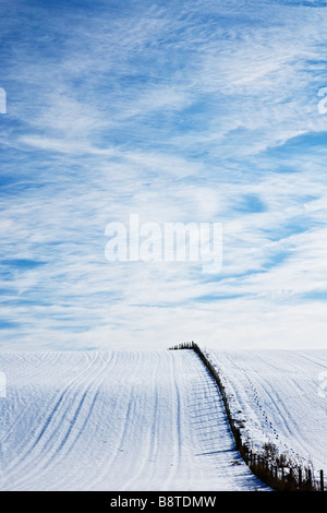 A sunny snowy winter landscape view or scene showing a snow covered field and cirrus cloud formation in a blue sky - Stock Photo