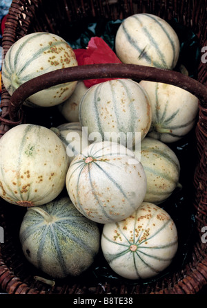 Melons in local market Cavalaire Provence France - Stock Photo