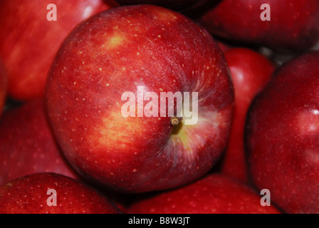 A red apple - Stock Photo