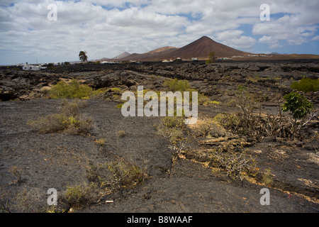 The village of Tahiche lost in the volcanic plains of Lanzarote island. - Stock Photo