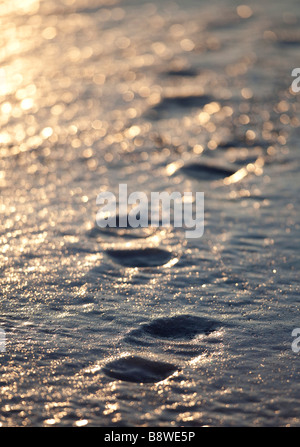 Frozen human footprints on ice - Stock Photo