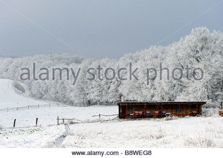 Country Landscape Covered with Snow Yorkshire UK - Stock Photo