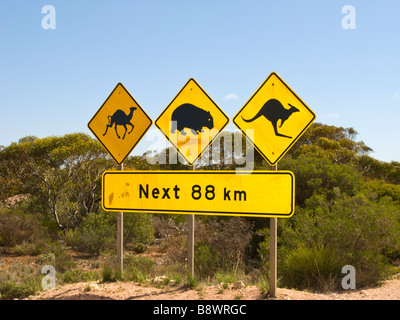 Famous signpost on the Nullarbor - Stock Photo