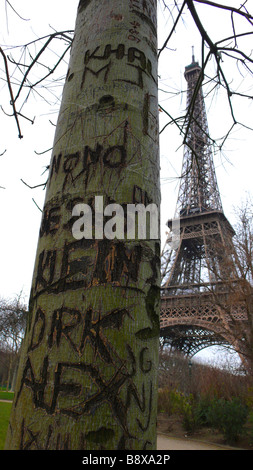 A tree with graffiti in Paris - Stock Photo