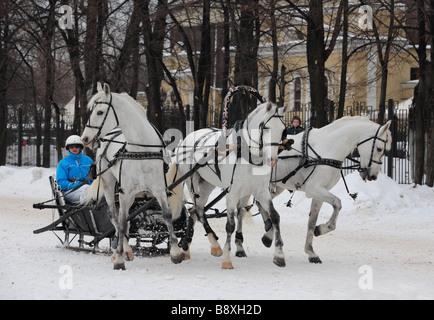 A three-horse-drawn troika in winter, Russia, 2009 - Stock Photo