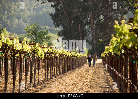 couple walking in vineyard - Stock Photo