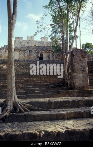 Structure VIII at the Mayan ruins of Calakmul, Campeche, Mexico - Stock Photo