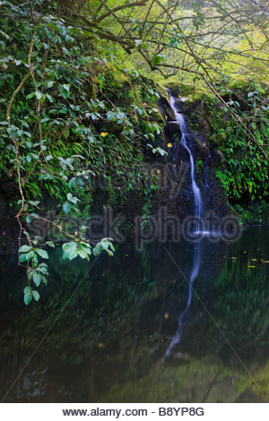 Hana road located on maui hawaii is one of the most for Small pond base