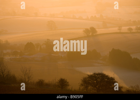 Farm bathed in golden morning sunlight on a frosty and misty winter morning Raddon Hill Devon England - Stock Photo