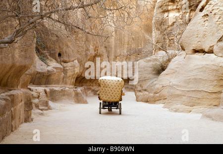 A horse and cart makes its way through the Siq at the entrance to Petra, Jordan - Stock Photo