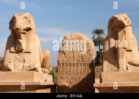 Avenue of [ram headed] sphinxes and ancient egyptian hieroglyphics inscribed on carved stone tablet, Karnak Temple, - Stock Photo