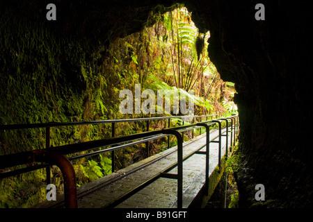 Thurston Lava Tube - Volcanoes National Park, Big Island, Hawaii, USA - Stock Photo