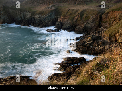 South Devon coast at Prawle Point near East Prawle. UK. Europe - Stock Photo