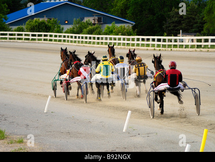 harness racing - Stock Photo