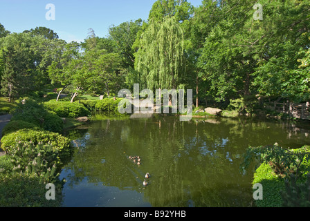 Japanese Garden, Fort Worth, Texas, USA Stock Photo: 38154203 - Alamy