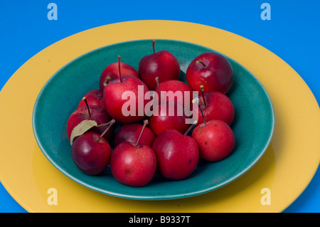 Crab apples - Stock Photo