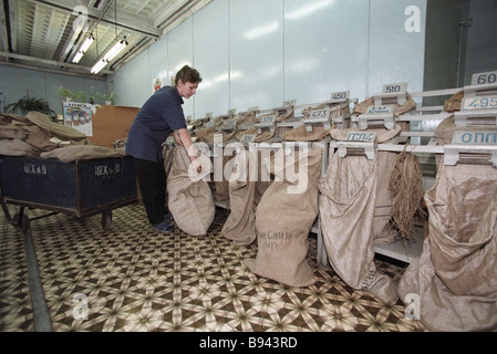 A worker in the mail sorting room of the Moscow post office - Stock Photo