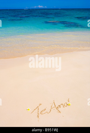 The words 'Te amo' are written on a sandy beach in Hawaii with plumeria blossoms alongside - Stock Photo