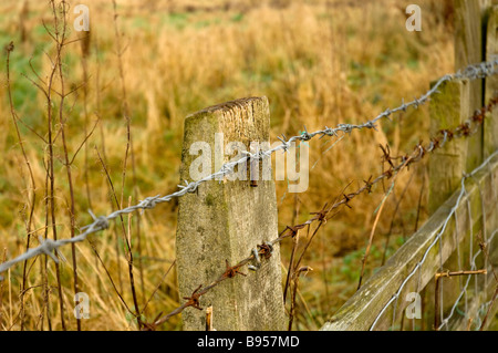 Wooden fence post and barbed wire England UK United Kingdom GB Great Britain - Stock Photo