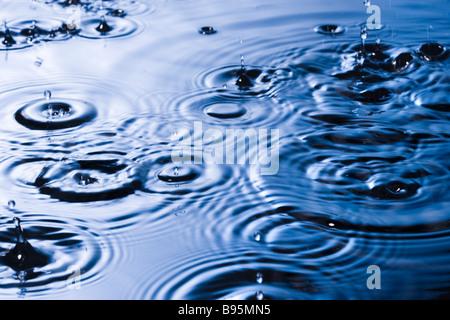 Rain drops and ripples - Stock Photo