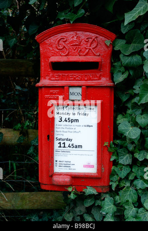 A rural post box surrounded by Ivy in Lancing - Stock Photo