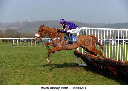 A horse and jockey jump hurdles at Ludlow Racecourse Shropshire - Stock Photo